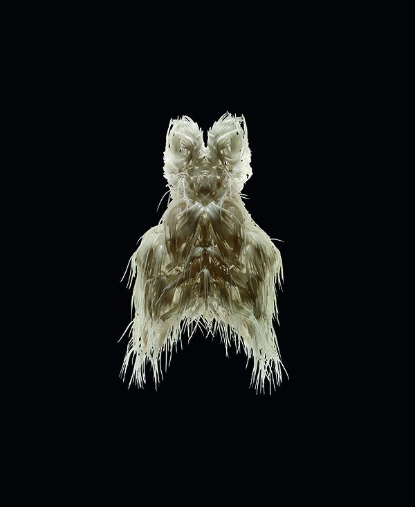 biopiracy-dress_expozitie-iris-van-herpen_transforming-fashion_tehnologie-si-inovatie-in-moda