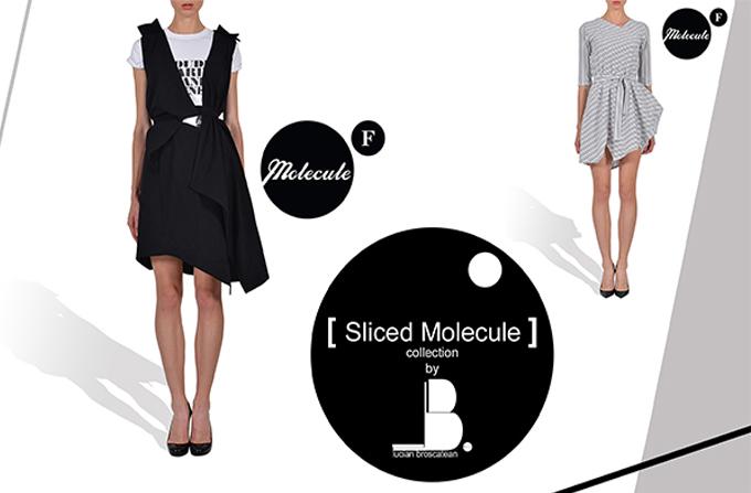 SLICED MOLECULE: Colectia Lucian Broscatean pentru Molecule F