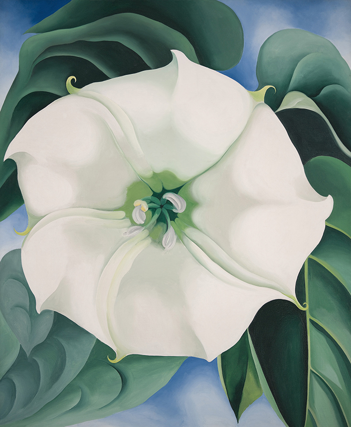 2014.35 Georgia O'Keeffe Jimson Weed/White Flower No. 1, 1932 Oil on canvas 48 × 40 in. (121.9 × 101.6 cm) Framed: 53 in. × 44 3/4 in. × 2 1/2 in.