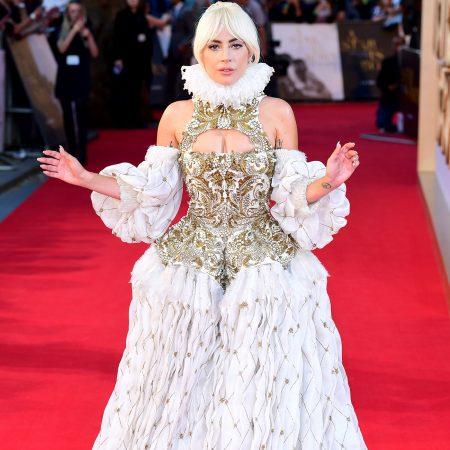 Pur si simplu WOW. Lady Gaga, intr-o creatie Alexander McQueen.