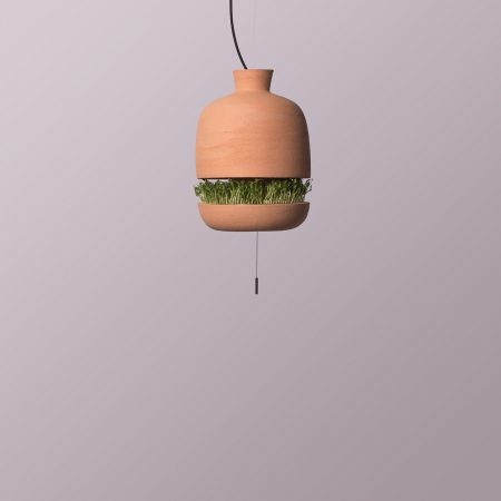 O micro-gradina intr-o lampa de teracota